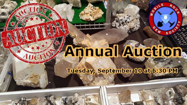 auction2019.png