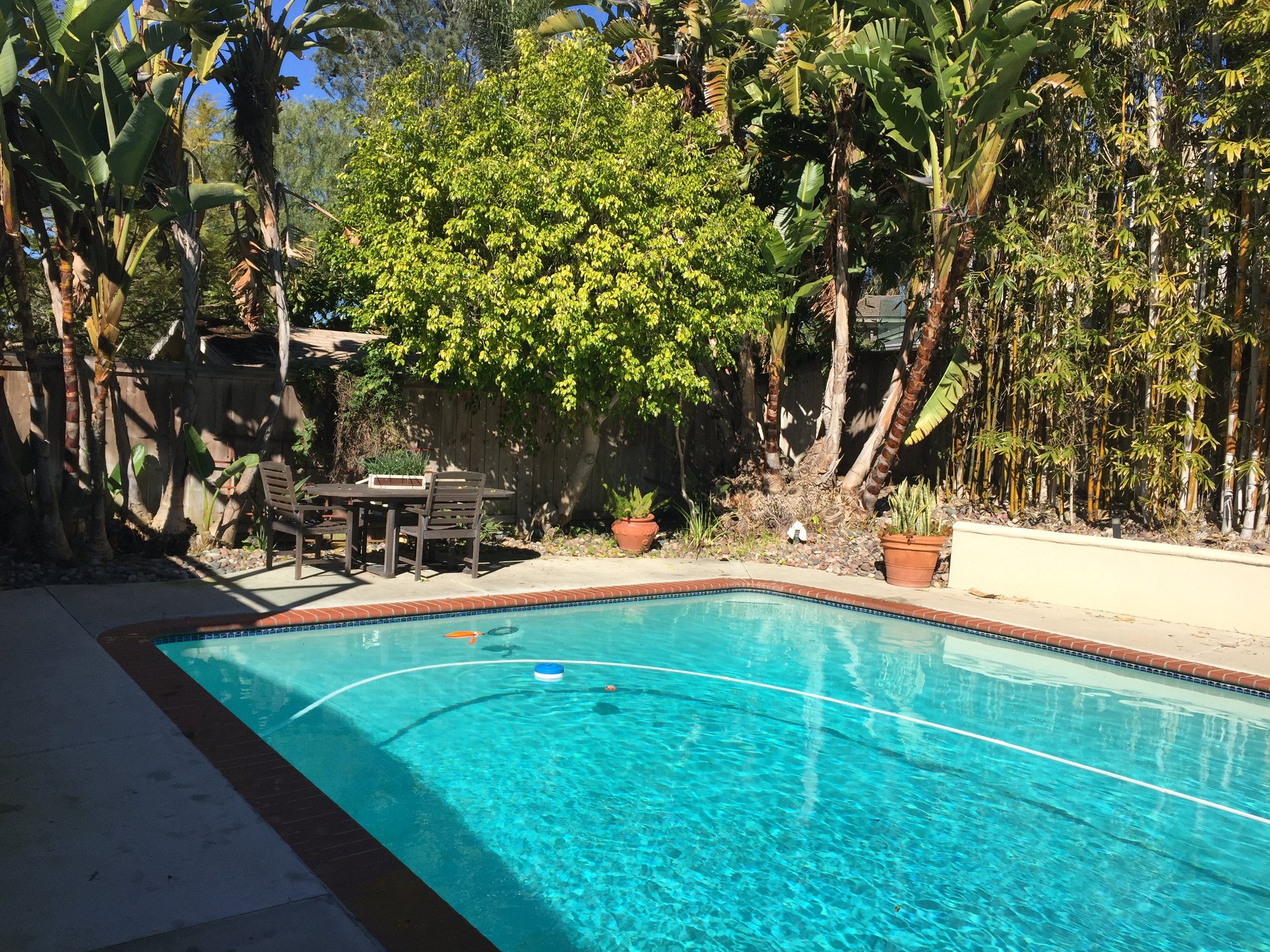 Before, there was a very large pool that was fit for an active family, but now with the kids grown up and moved out the clients want a leisure pool that is suitable for the new activities that they want to host in their backyard.