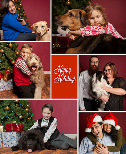 Christmas Mini Sessions, Family Photography Staten Island, Pet Photography Staten Island