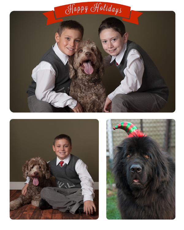 Christmas Portraits, Family Photography, Pet Photography