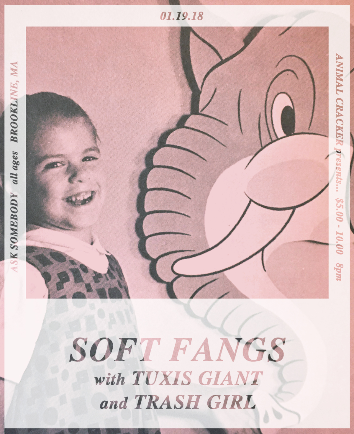 Flyer-SoftFangs011918-Pinks copy.jpg