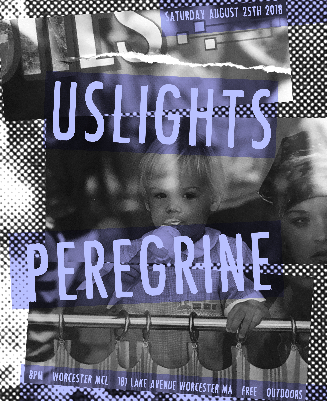 Flyer-USLightsPeregrine825-3.jpg