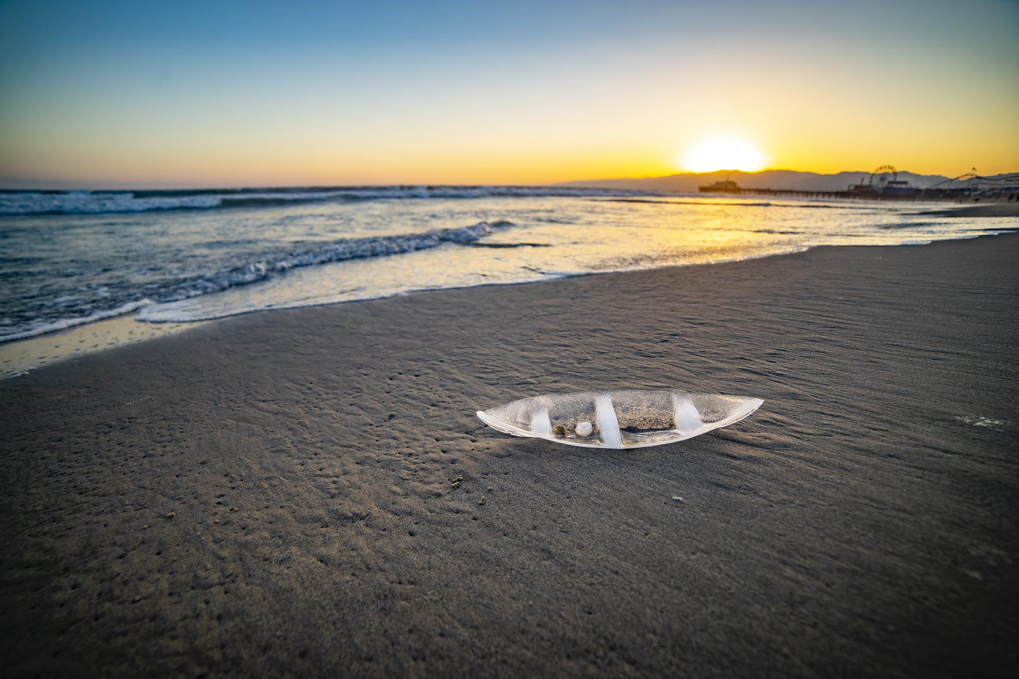 Ice Boat, Santa Monica, CA 2019
