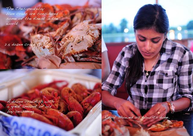 crabs+in+DC11.jpg