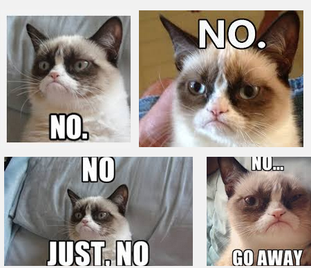 Thank you Grumpy Cat + Google images