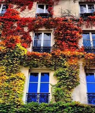 201410-ss-fall-foliage-paris.jpg