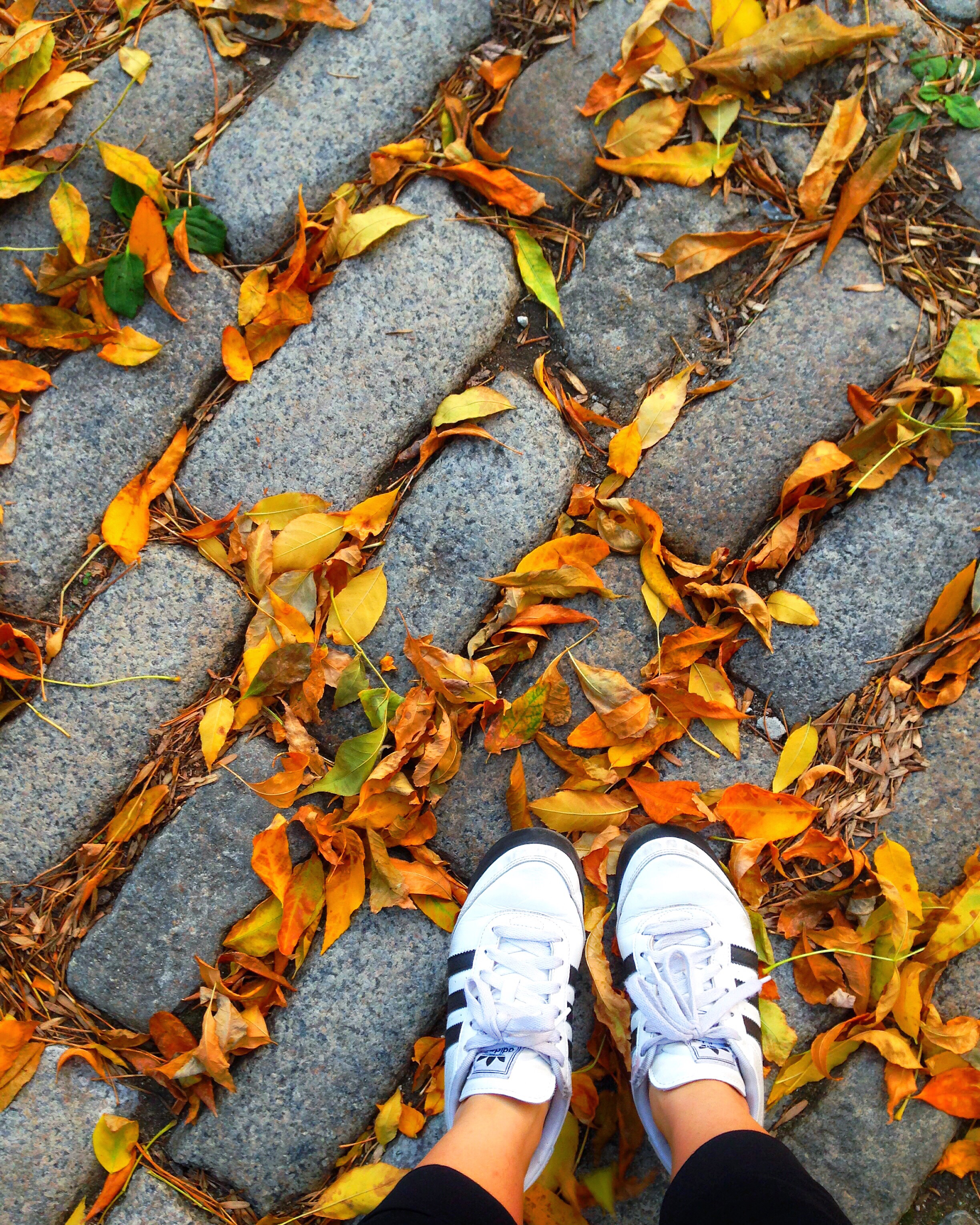 Lifestyle Changes: Little Steps = Big Outcomes | Living Minnaly