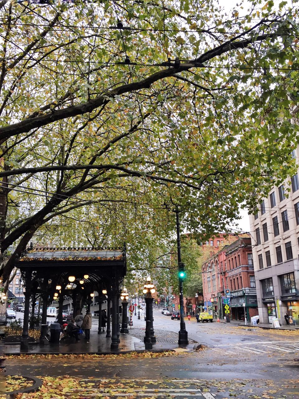 Seattle | Living Minnaly10.jpg