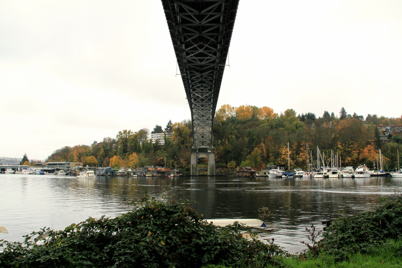 Seattle | Living Minnaly71.jpg