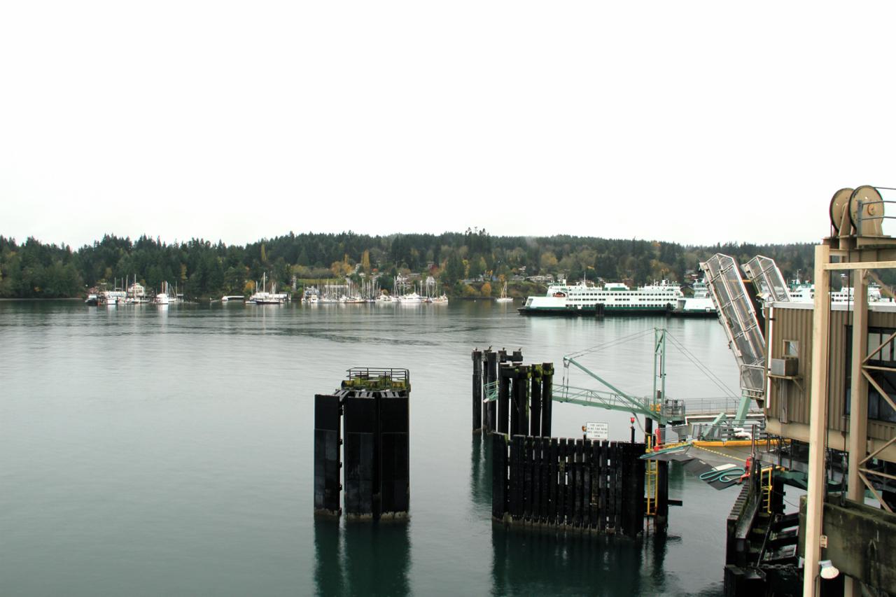 Seattle | Living Minnaly65.jpg