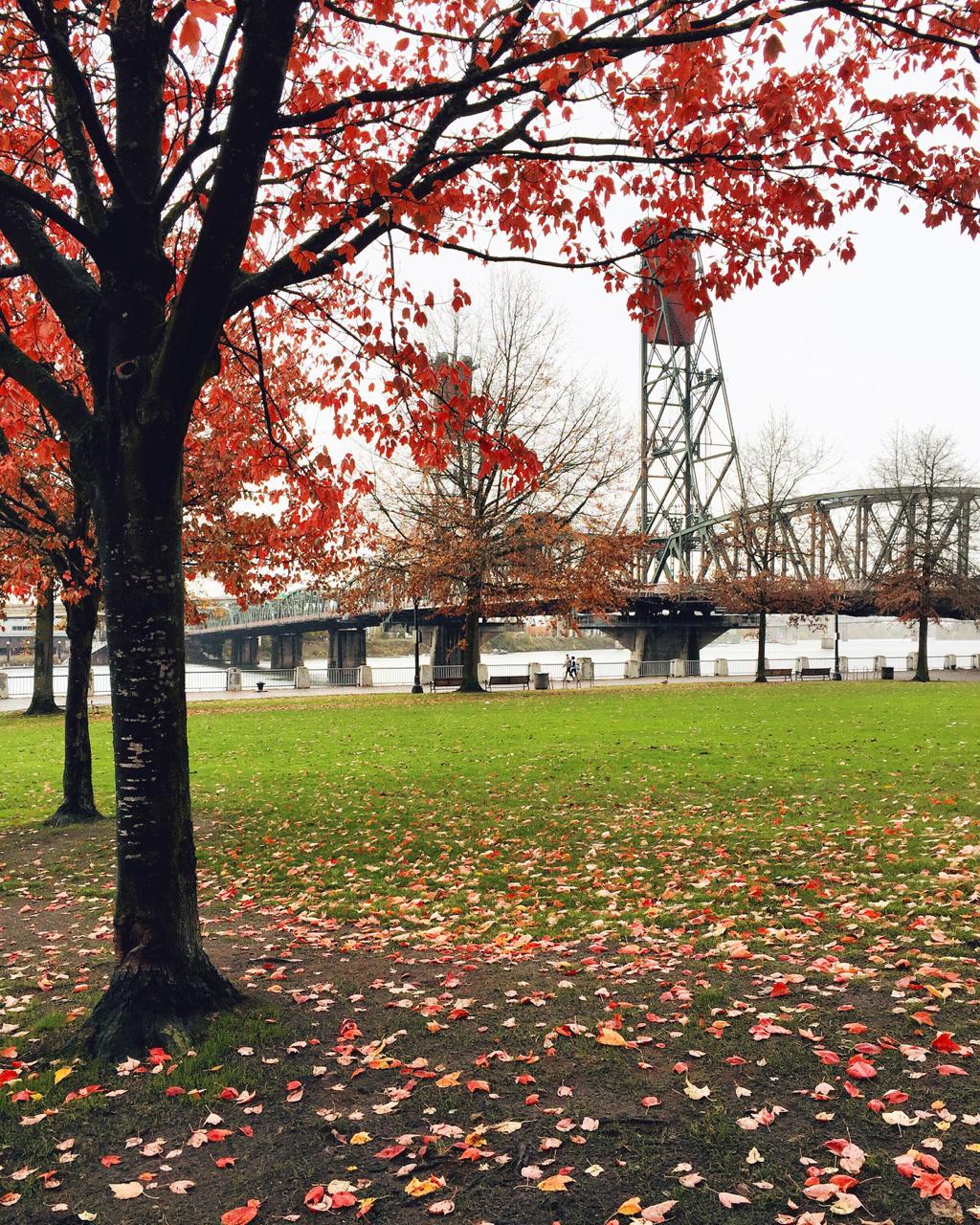 When in Portland | Living Minnaly14.jpg