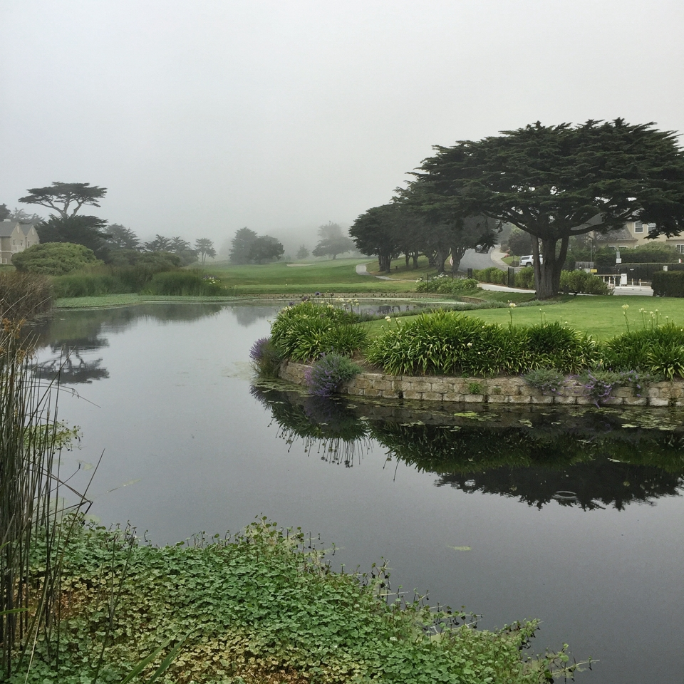 Ritz Carlton Half Moon Bay | Living Minnaly02.jpg