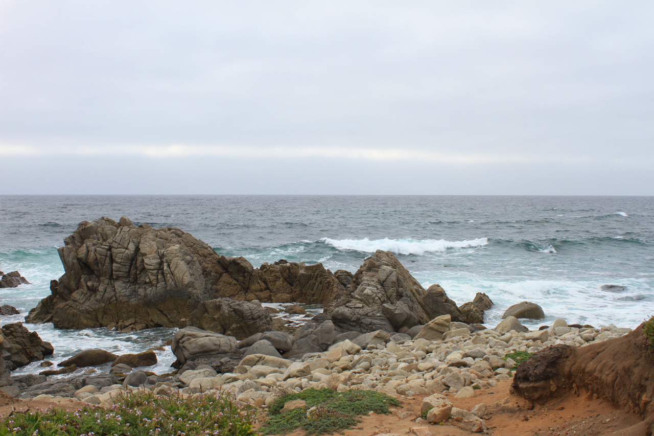 Carmel + Monterey Guide | Living Minnaly36.jpg
