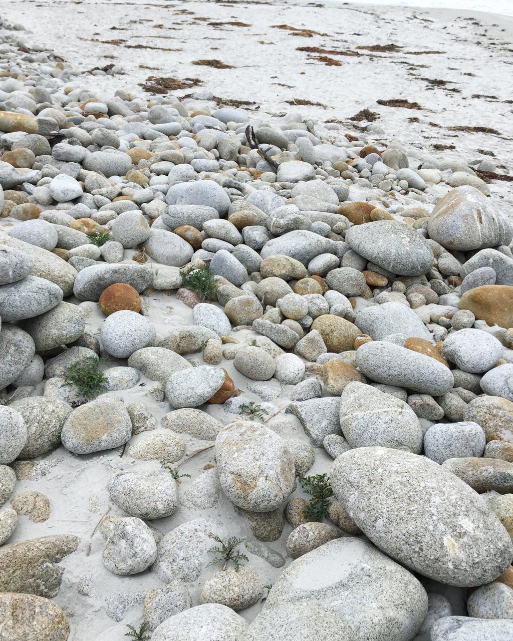 Carmel + Monterey Guide | Living Minnaly43.jpg