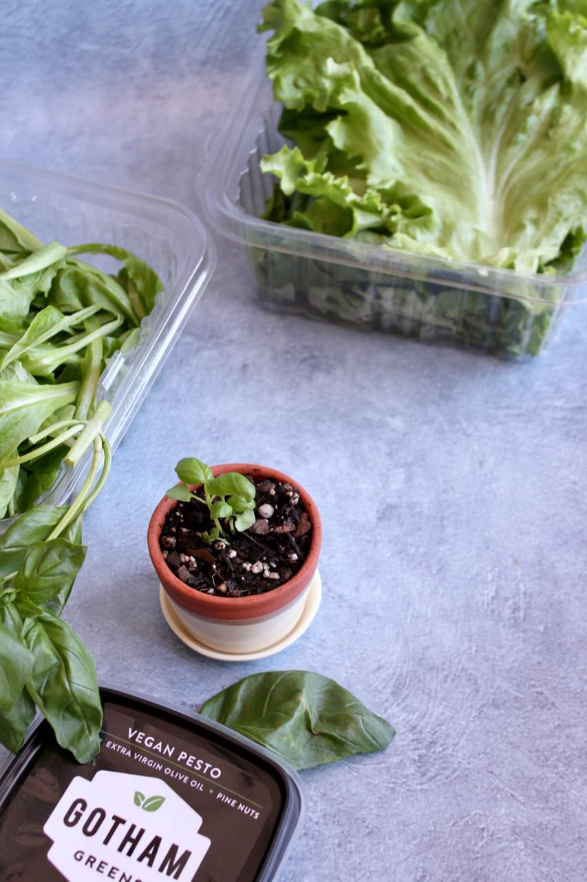 Why I Eat Local + Urban Farming with Gotham Greens | Living Minnaly - 35.jpg