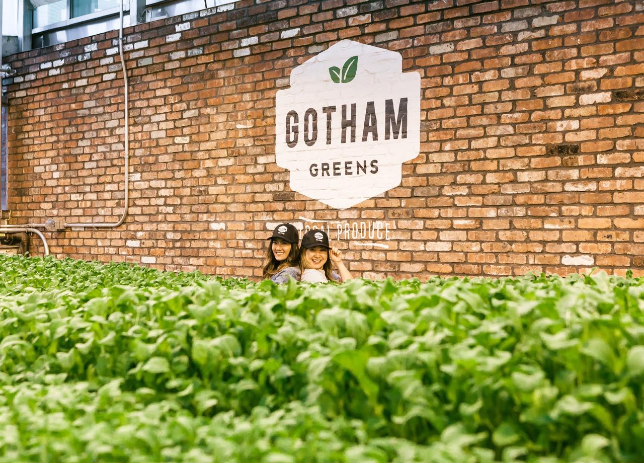 Why I Eat Local + Urban Farming with Gotham Greens | Living Minnaly - 19.jpg