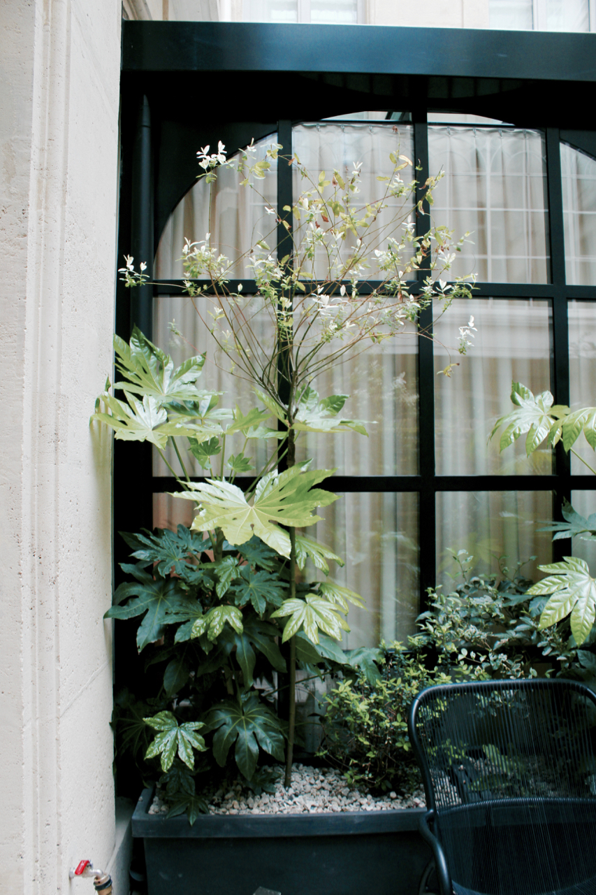 Where to Stay in Paris- Le Narcisse Blanc | Living Minnaly - 22.jpg