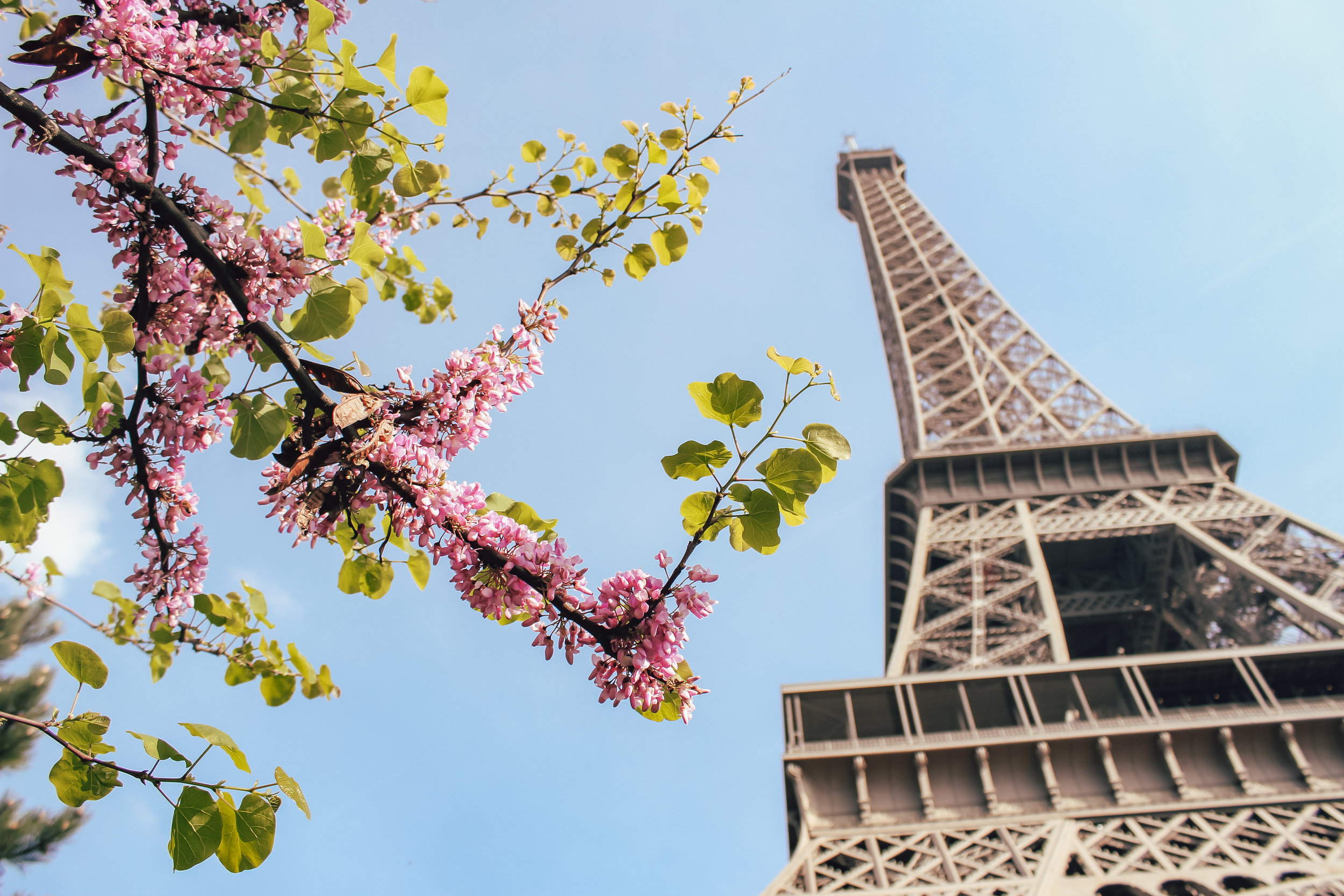 Minna's Guide to Paris- Best Things to Do, Eat, and See in Paris | Living Minnaly_44.jpg