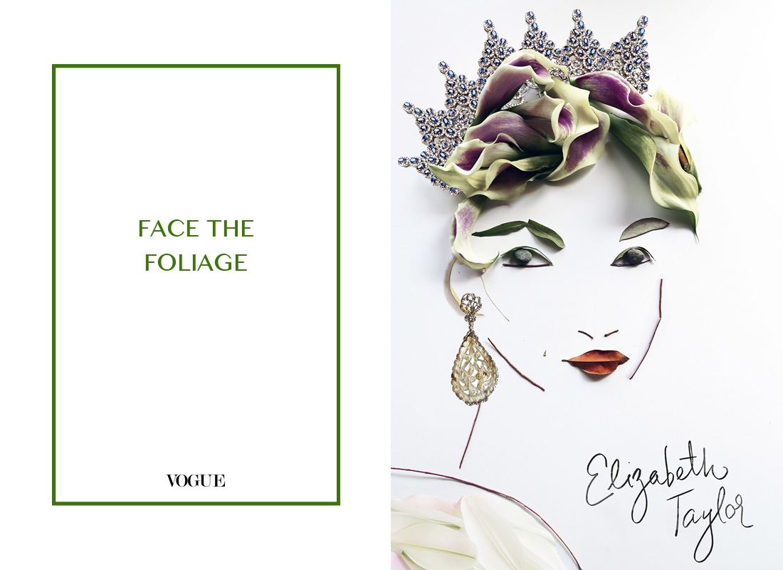 face the foliage slide 1.jpg