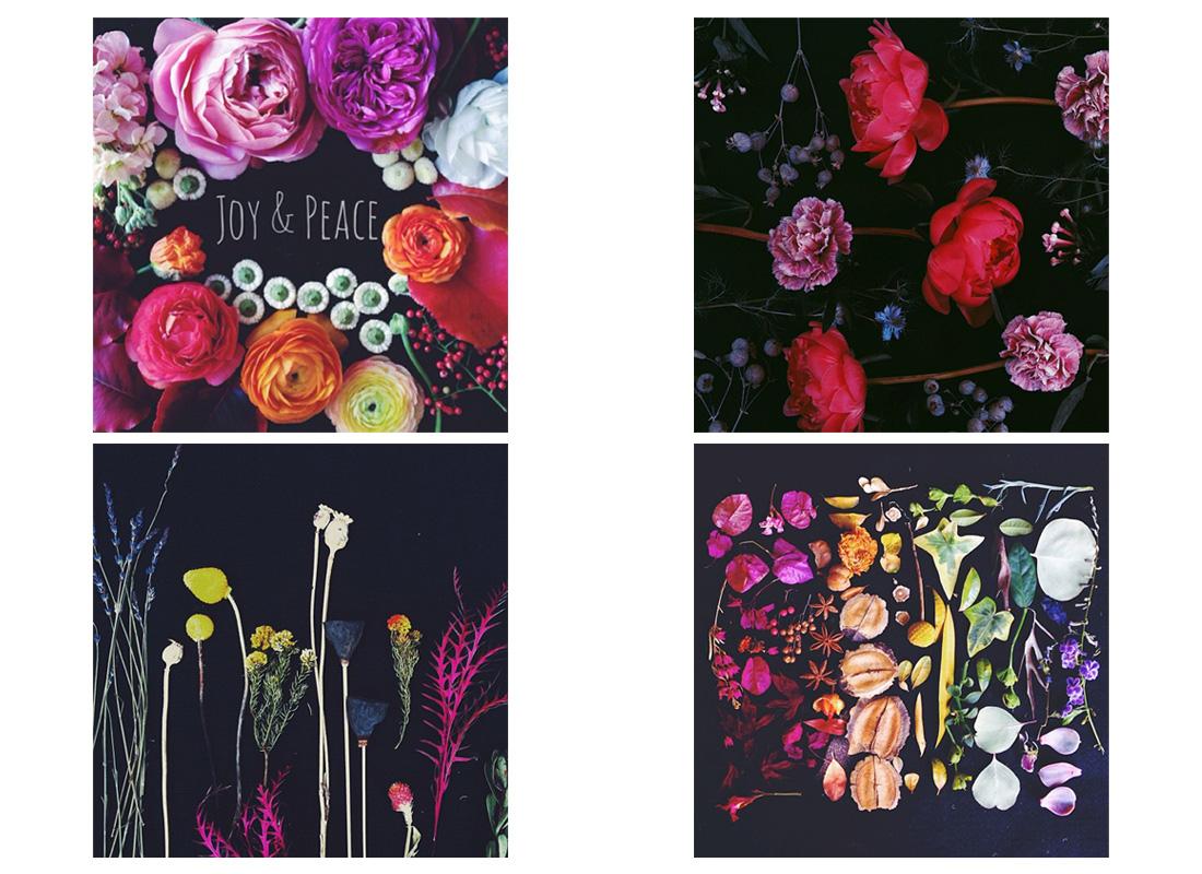 blooms on black slide 2.jpg