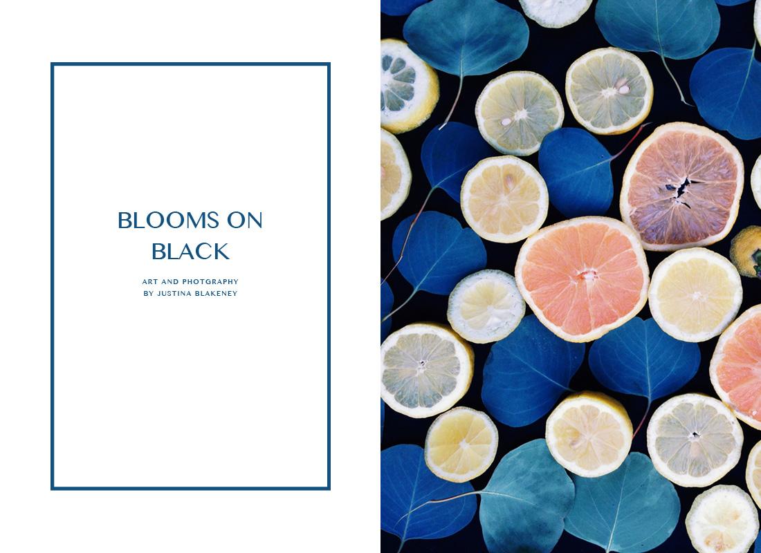 blooms on black slide 1.jpg