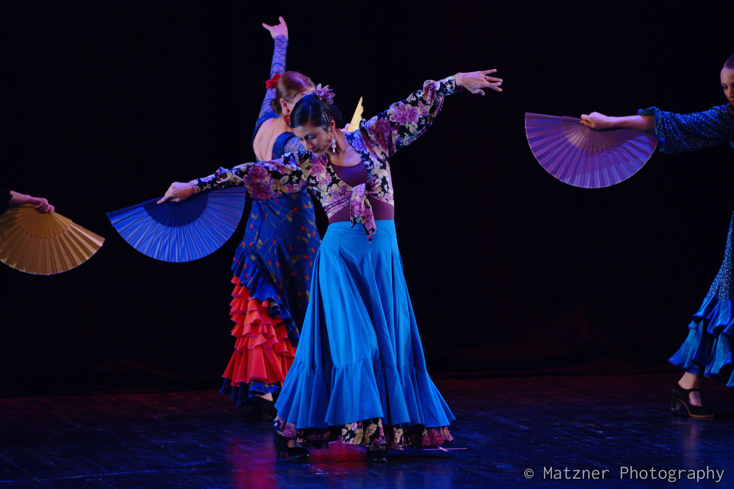 Tania Tandias  Flamenco.jpg