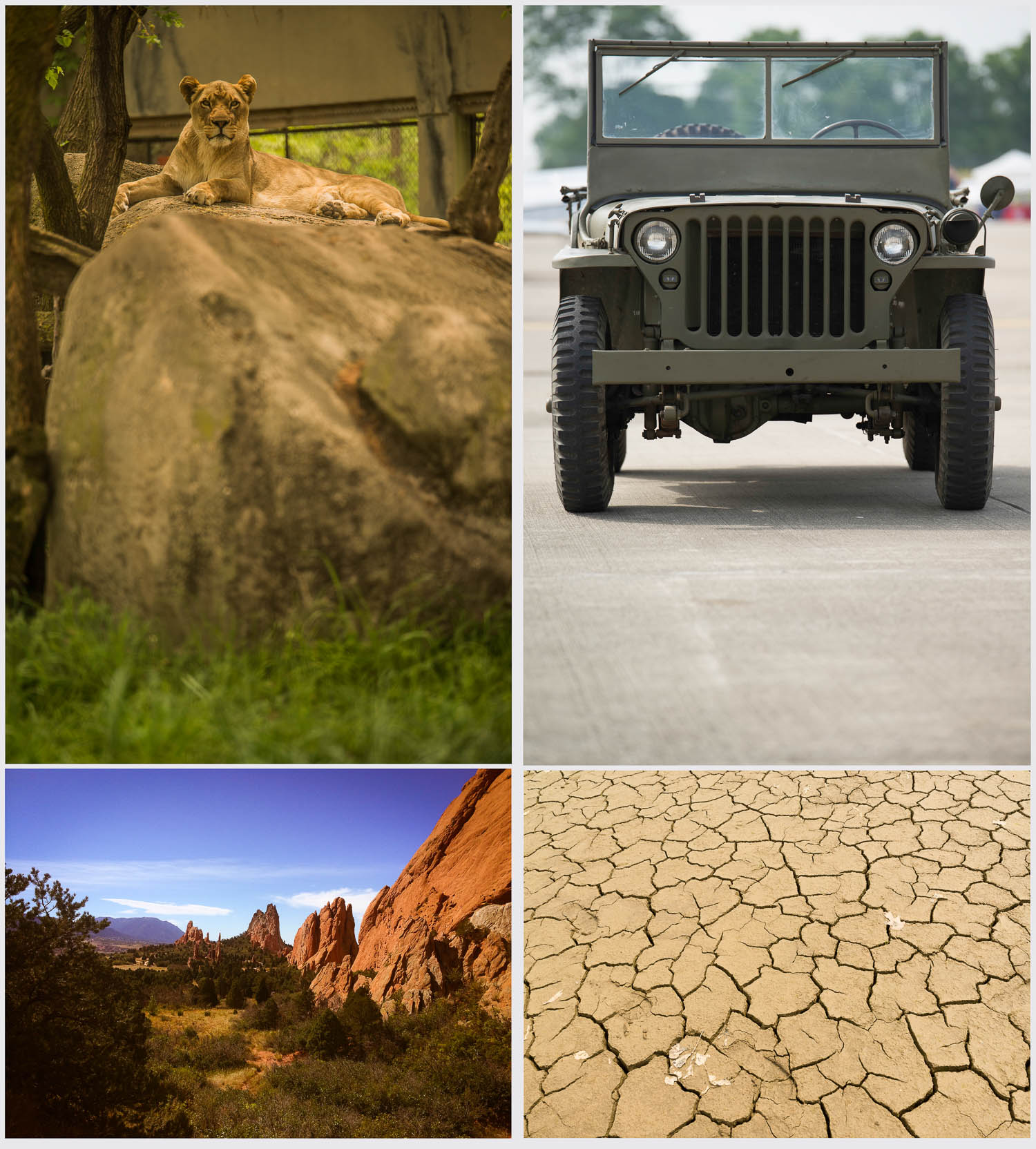 Photo Composite Elements:  Lion; Jeep Willys; Garden of the Gods; & dry lake bed.