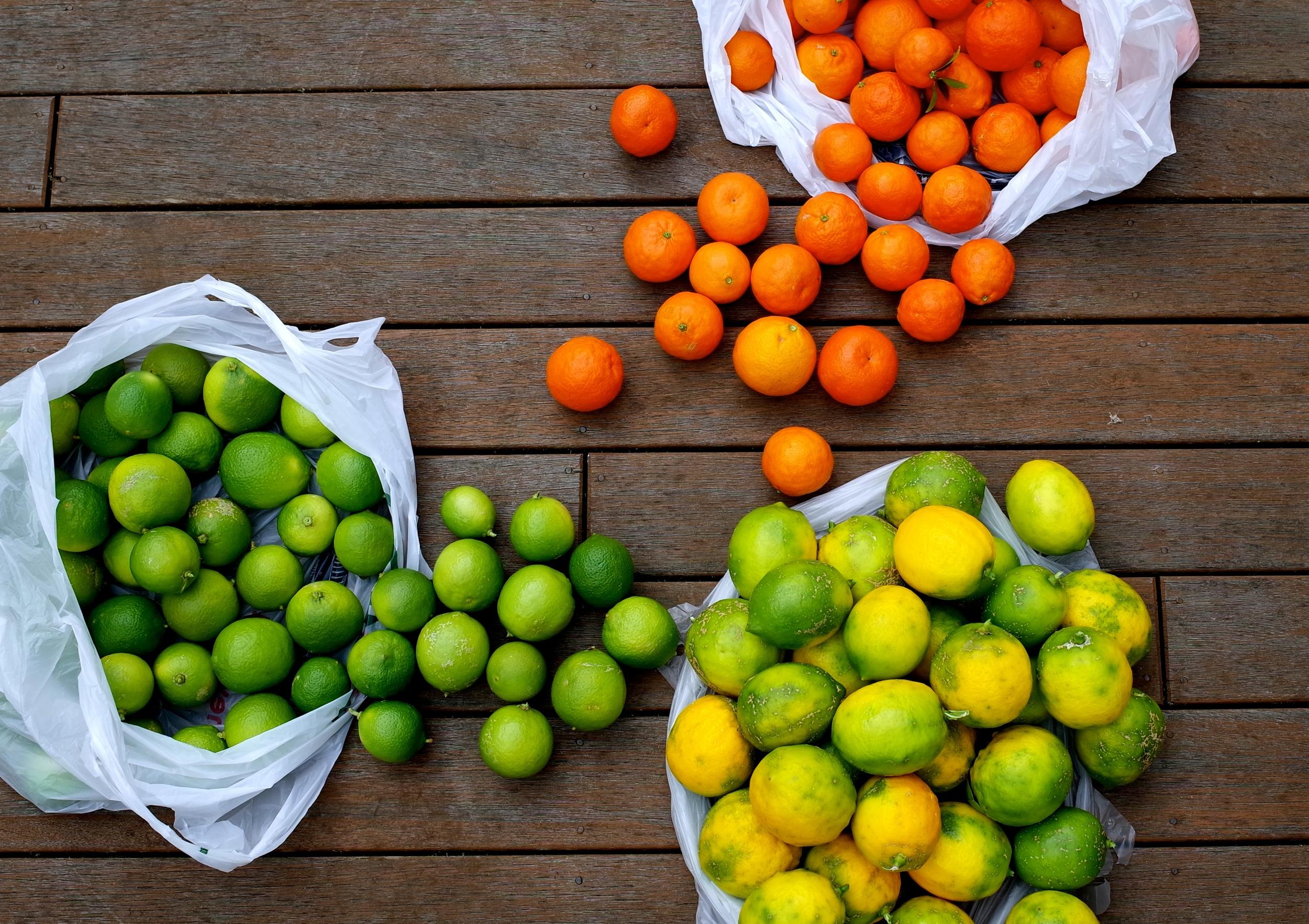 citrus cropped.jpg