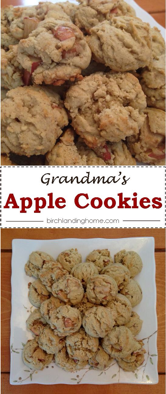 Grandma's Apple Cookie Recipe:  Great recipe for Fall or any time of the year!  Lightly spiced and not too sweet, perfect!