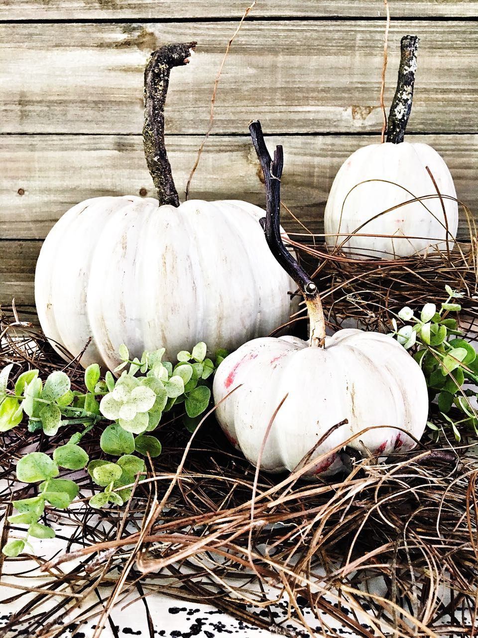 Painted Pumpkin and DIY Stems