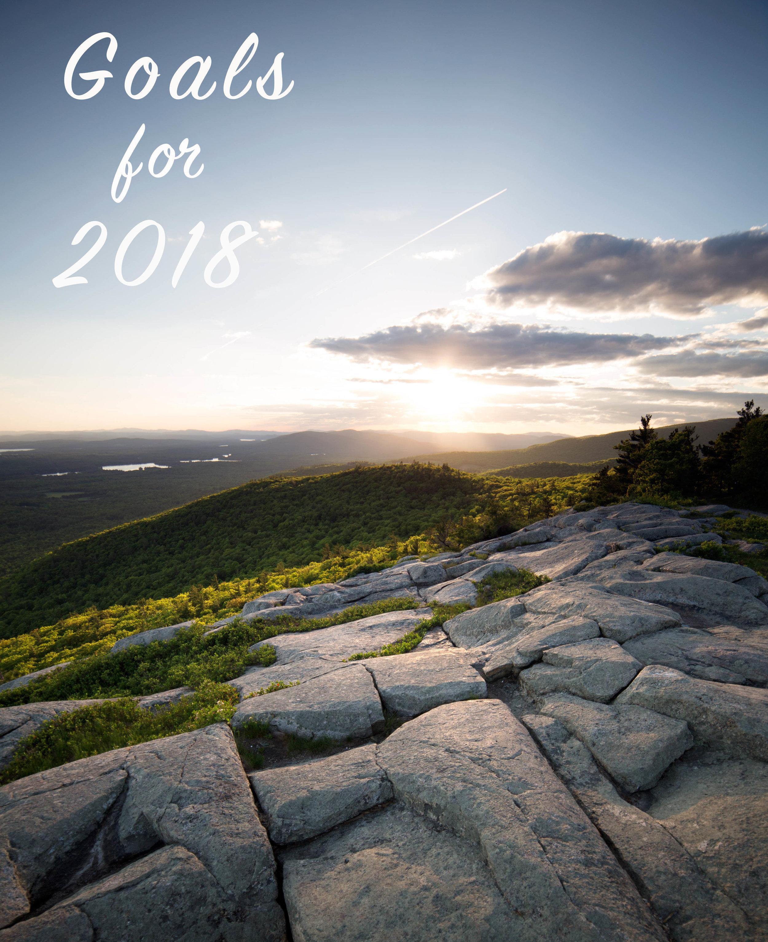 Goals for 2018 - Birch Landing Home