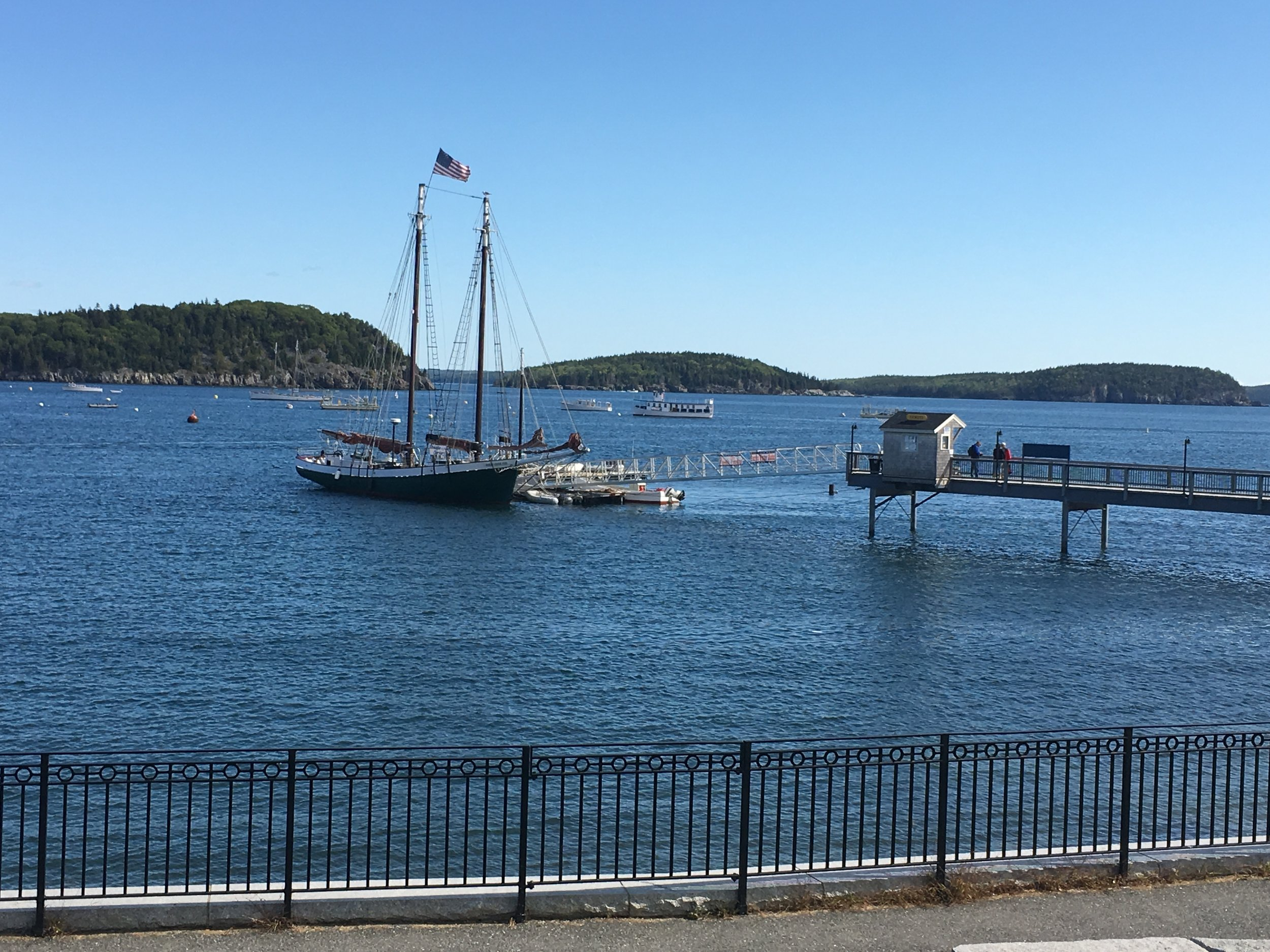 Watching the boats from downtown Bar Harbor.