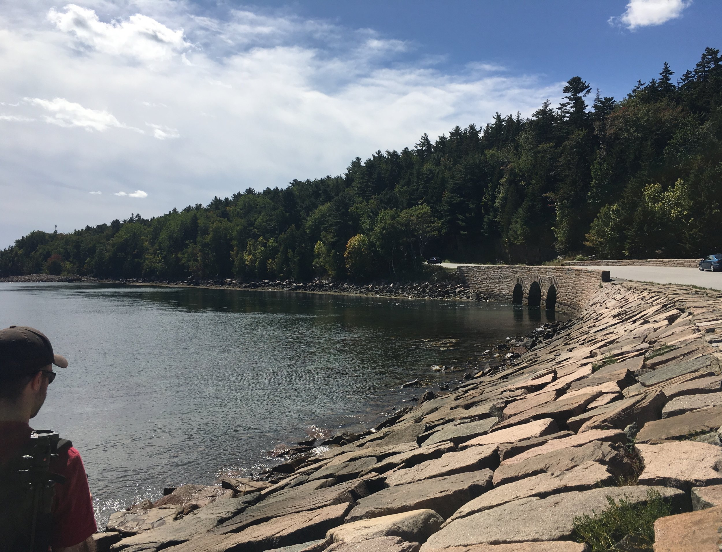 Otter Cove, Acadia National Park