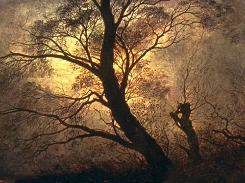 """Wisps of snow were still on the wind, too, sweet and sharp. The sun was going down. It sank into the stand of beech trees beyond the back lot, lighting their tops, so that their bare arterial branches turned to a netting of black vessels around brains made of light. The trees lolled under the weight of those luminescent organs growing at the tops of their slender trunks. The brains murmured among themselves. They kept counsel and possessed a wintery wisdom-cold scarlet and opaline minds, brief and burnished, flaring in the metallic blue of dusk. And then they were gone. The light drained from the sky and the trees and funneled to a point on the western horizon, where it seemed to be swallowed by the earth. The branches of the trees were darknesses over the lesser dark of dusk. Kathleen thought, That is like Howard's brain-lit and used up and then dark. Lit too brightly. How much light does the mind need? Have use for? Like a room full of lamps. Like a brain full of light.""    Paul Harding,  Tinkers   (Caspar David Friedrich,   Trees in the Moonlight )"