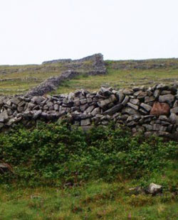 """During the Famine years, the British Protestant churches created work for the Irish to earn bread or soup. Much of the work was difficult, like splitting stone, or even useless, like gathering stones from fields and building rock walls that began and ended randomly across the countryside.  Weak from hunger and malnourishment, many people died """"on the job"""" as they tried to secure food for their families who were starving to death."""