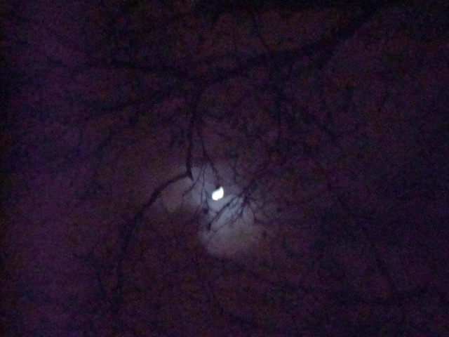 London on a January night. Wolf Moon waxing.