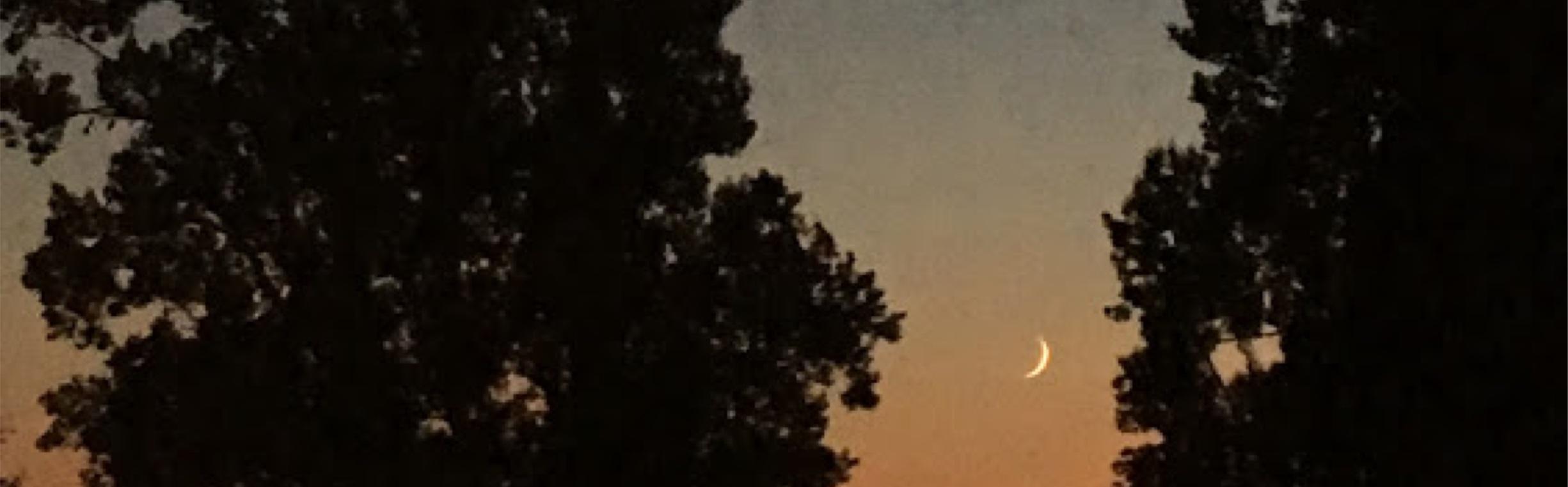 Blog_header image_moon.jpg