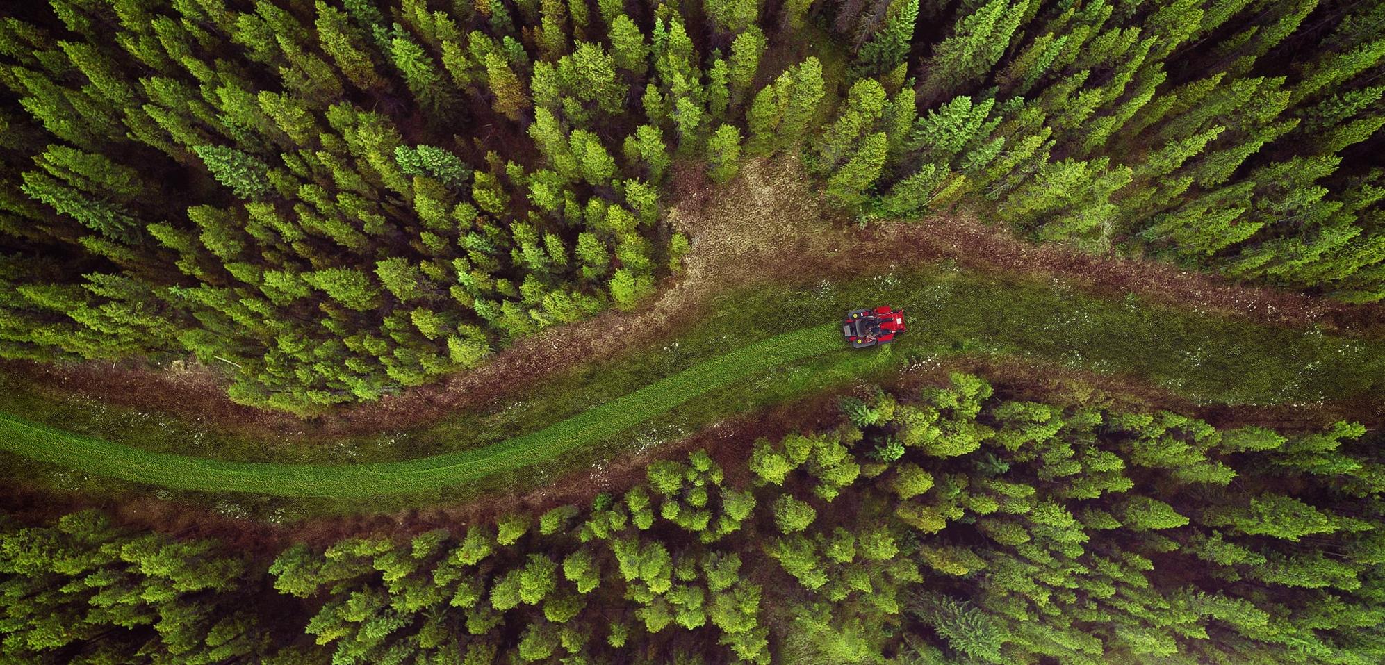 FPO_Styleframe_AerialForest_02.jpg