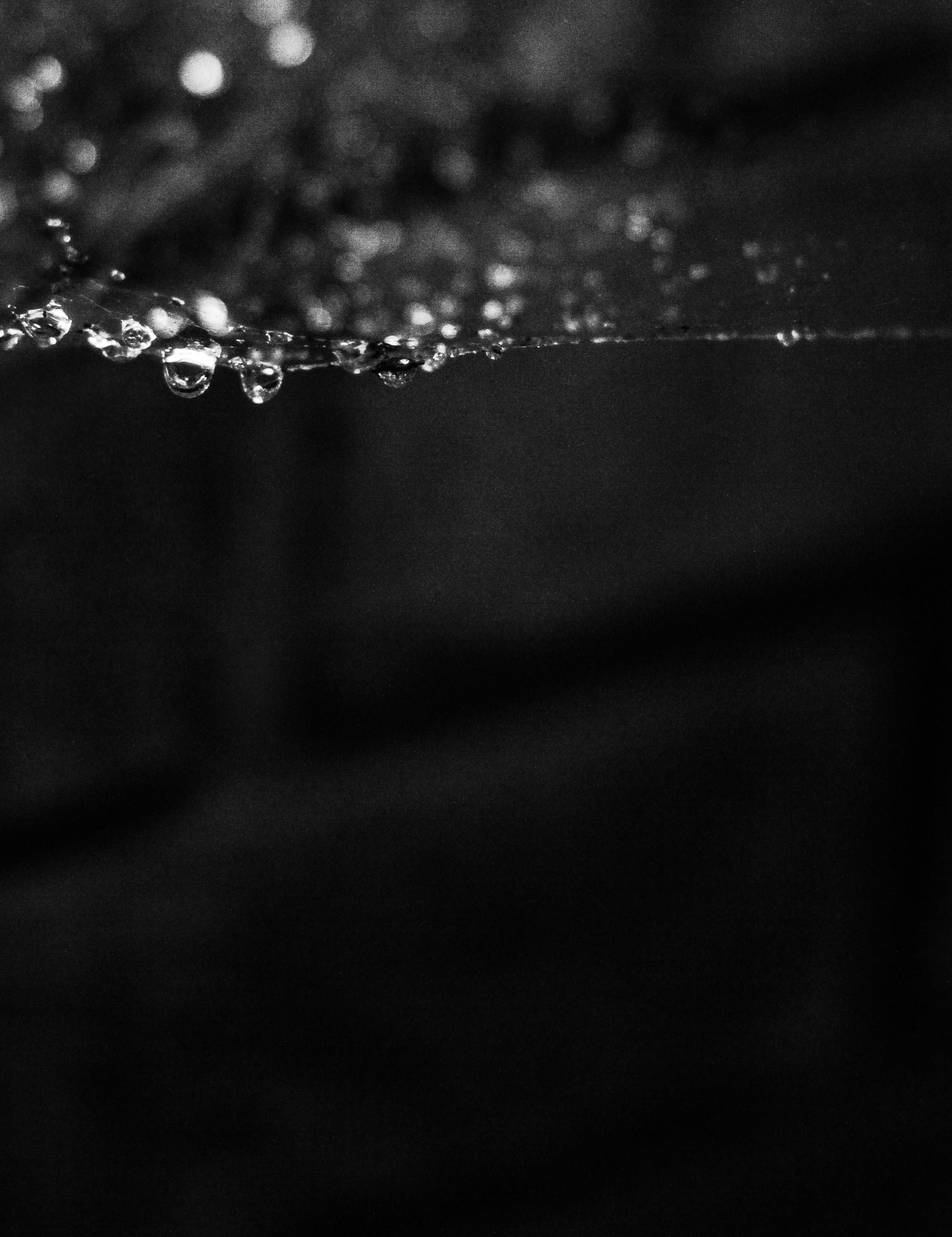 RainInstagram-4.JPG