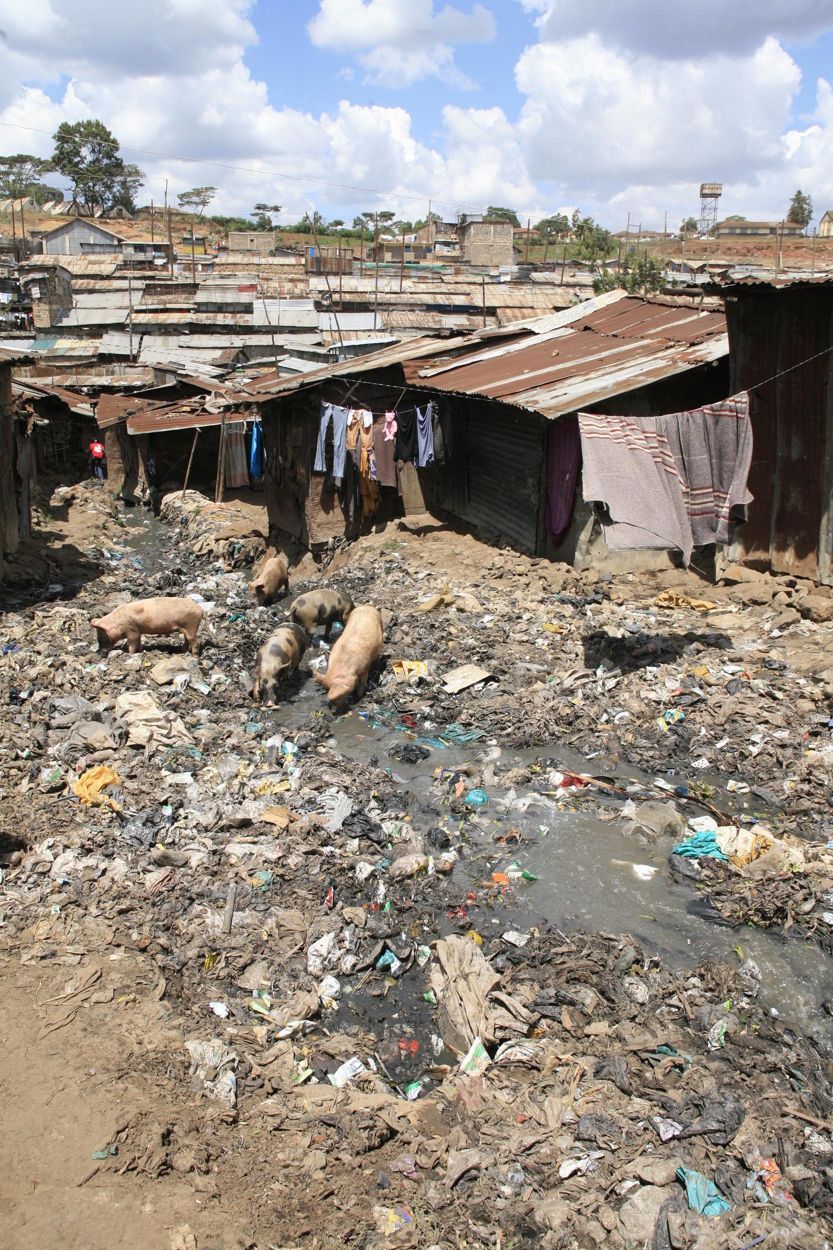 Slums 6.jpg