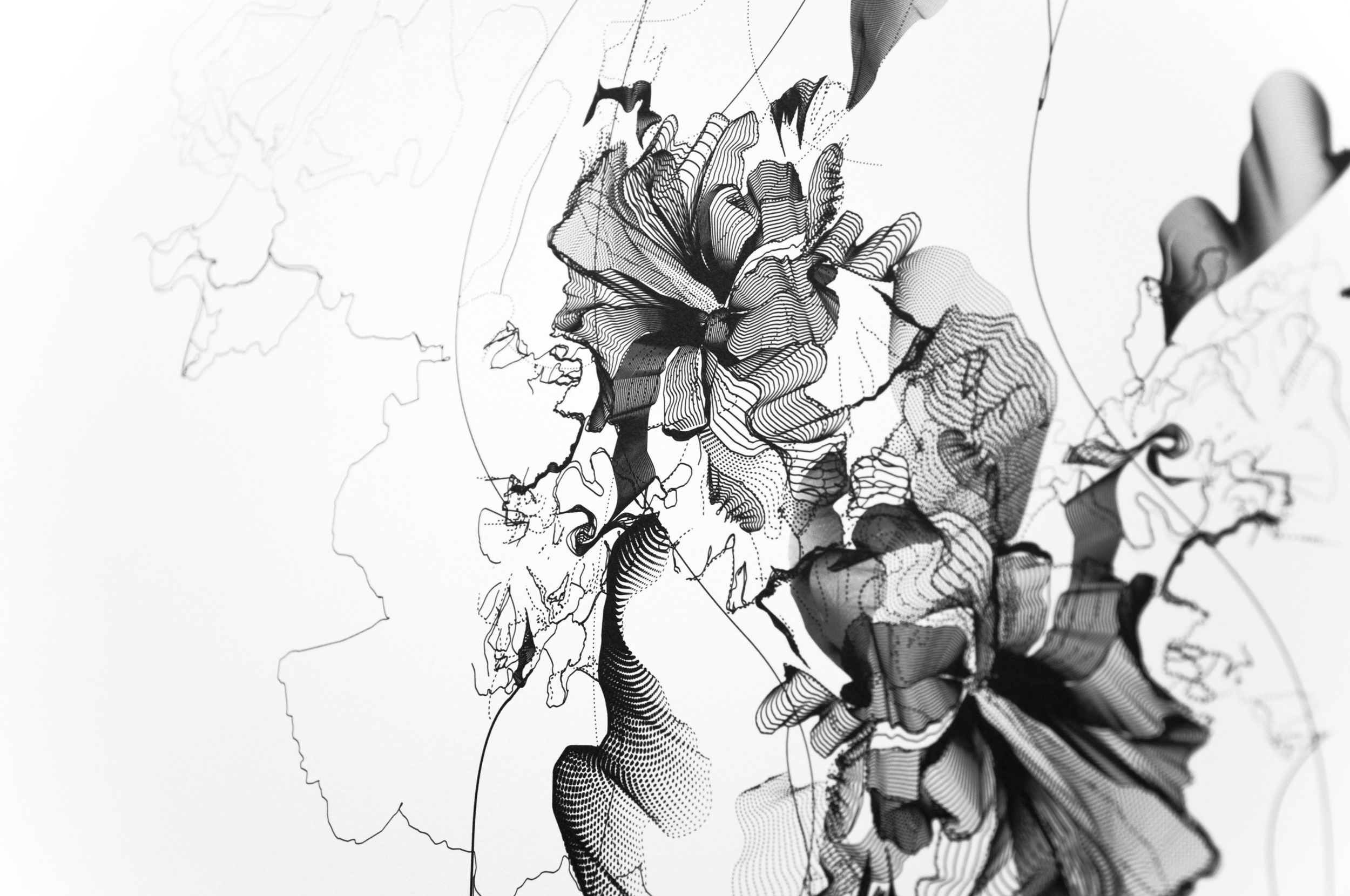 Lilac_0115.jpg