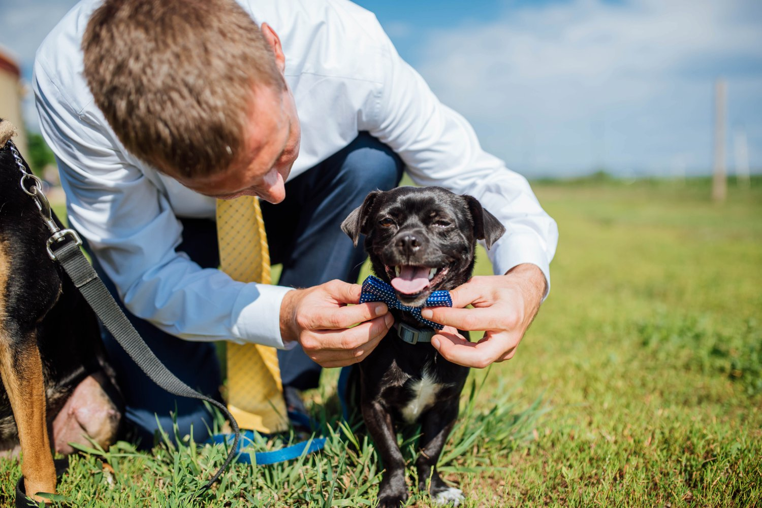 I definitely need to incorporate my dogs into my wedding! And look at this one! He has a bowtie!Photo by Maddie Mae Photography