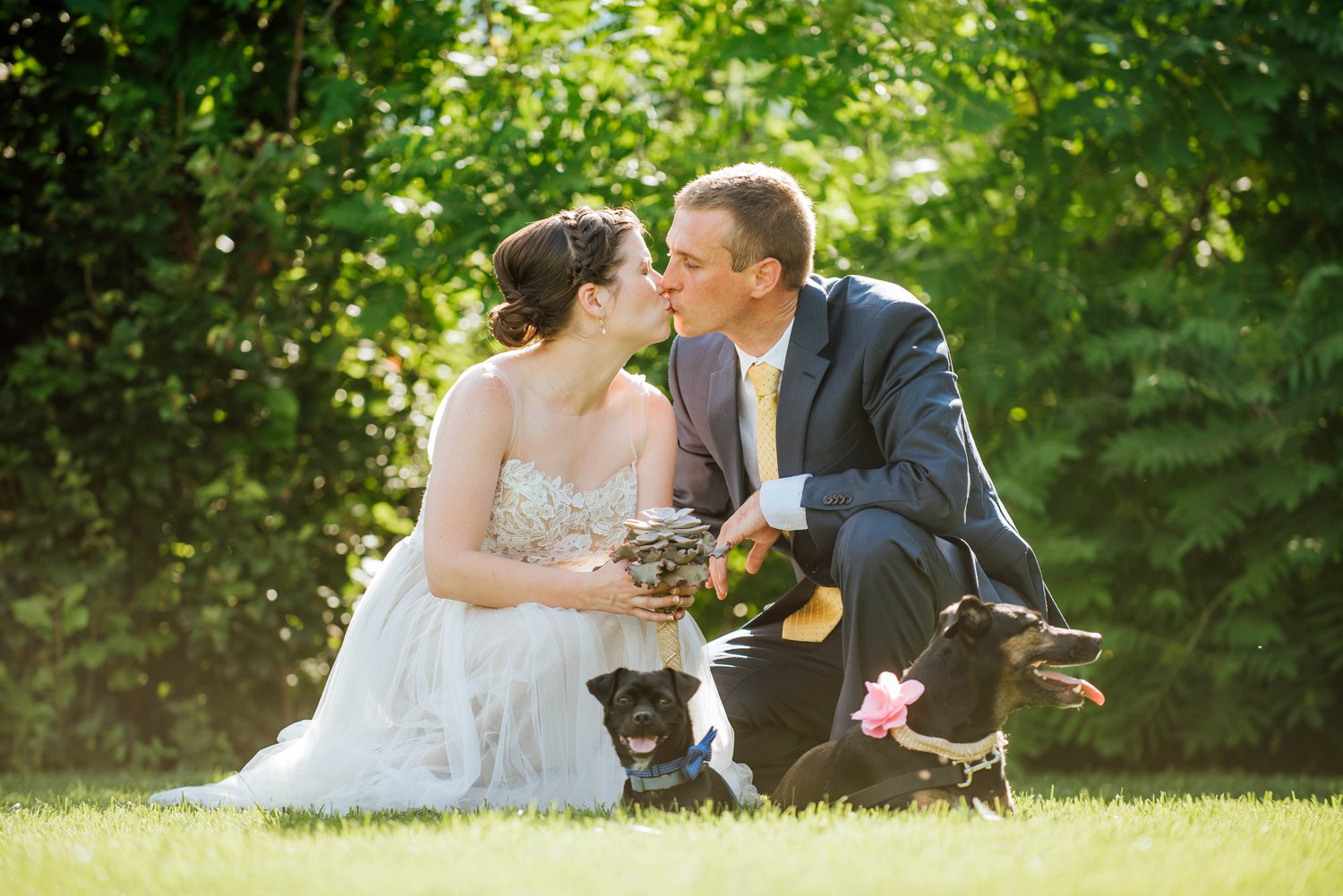 I love how the dogs have bow ties and flowers attached to their collars.Photo by Maddie Mae Photography