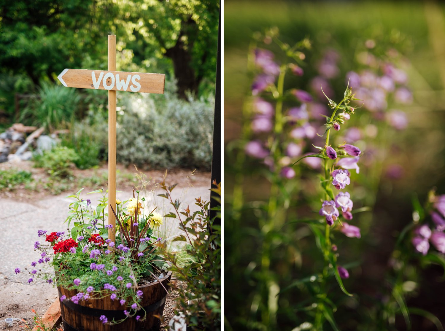 I love this idea of sticking wooden signs into different flower pots. Such a creative way to direct guests.Photo by Maddie Mae Photography