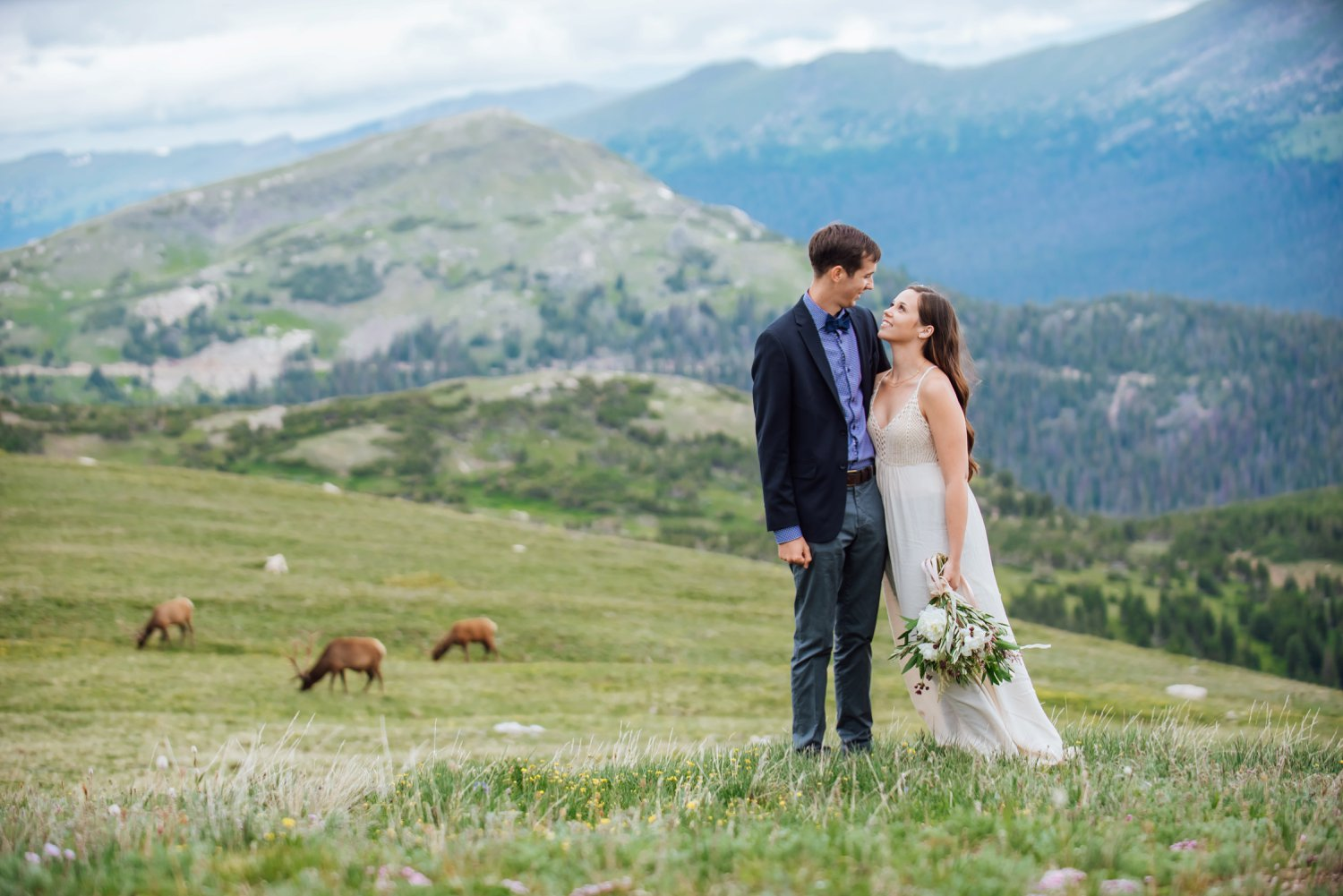 This is so cool to incorporate wildlife in the background for this Rocky Mountain National Park wedding! Photo by Maddie Mae Photography
