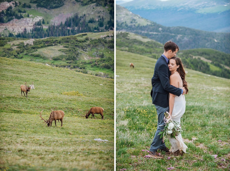 wedding-photo-elk-mountain-alpine-tundra-rocky-mountain-national-park-wedding-photographer-estes-park-elopement-maddie-mae-photography