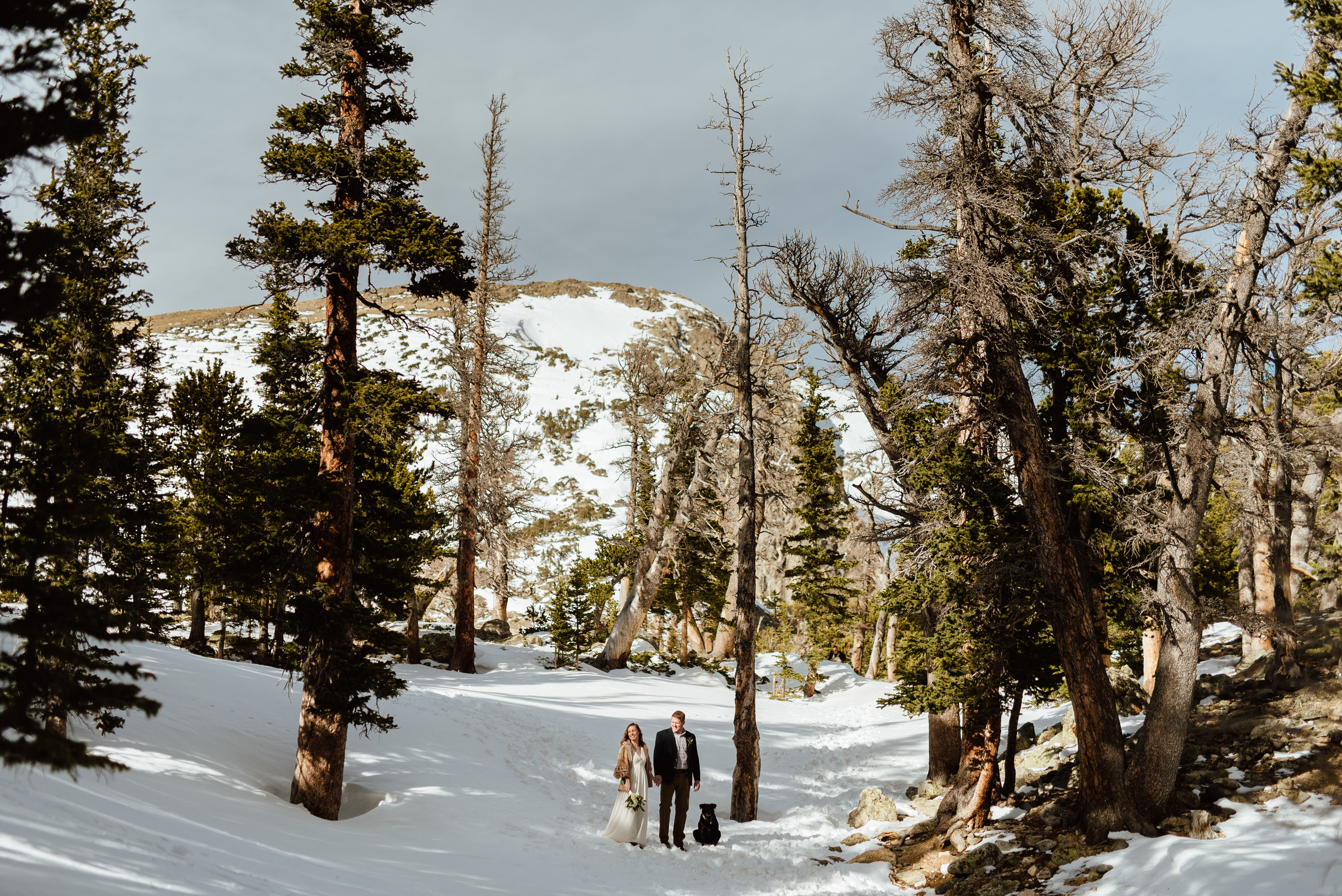 The forest surrounding Saint Mary's Glacier in Idaho Springs, Colorado is such a beautiful spot to get married. I love these adventurous hiking wedding photos!| Intimate elopement pictures by mountain wedding photographer, Maddie Mae.