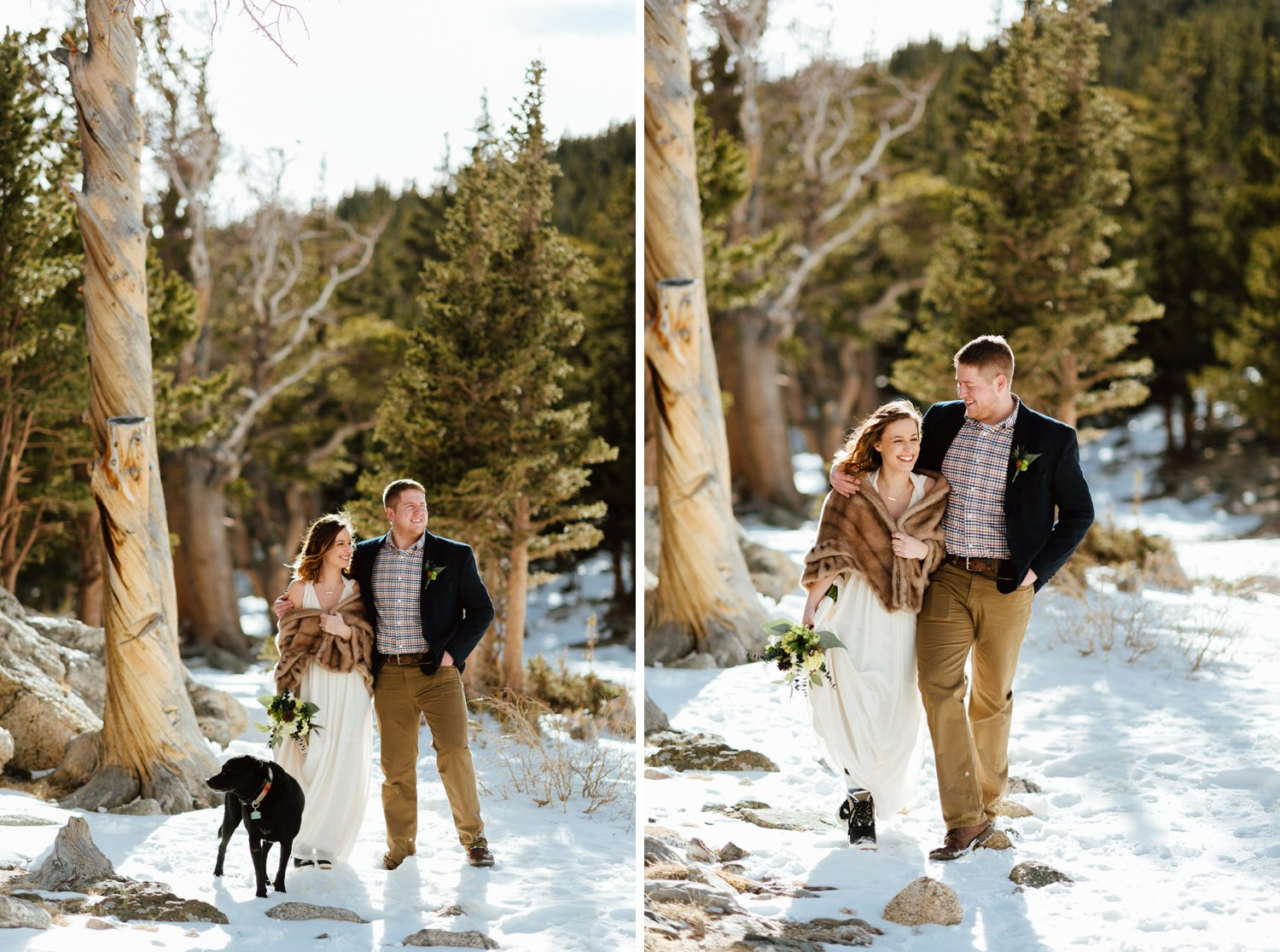 This bride and groom look adorable hiking through the woods on their wedding day! I love that they even brought their dog along on their elopement at St. Mary's Glacier in Colorado's mountains!| Intimate wedding photos by mountain wedding photographer,Maddie Mae.