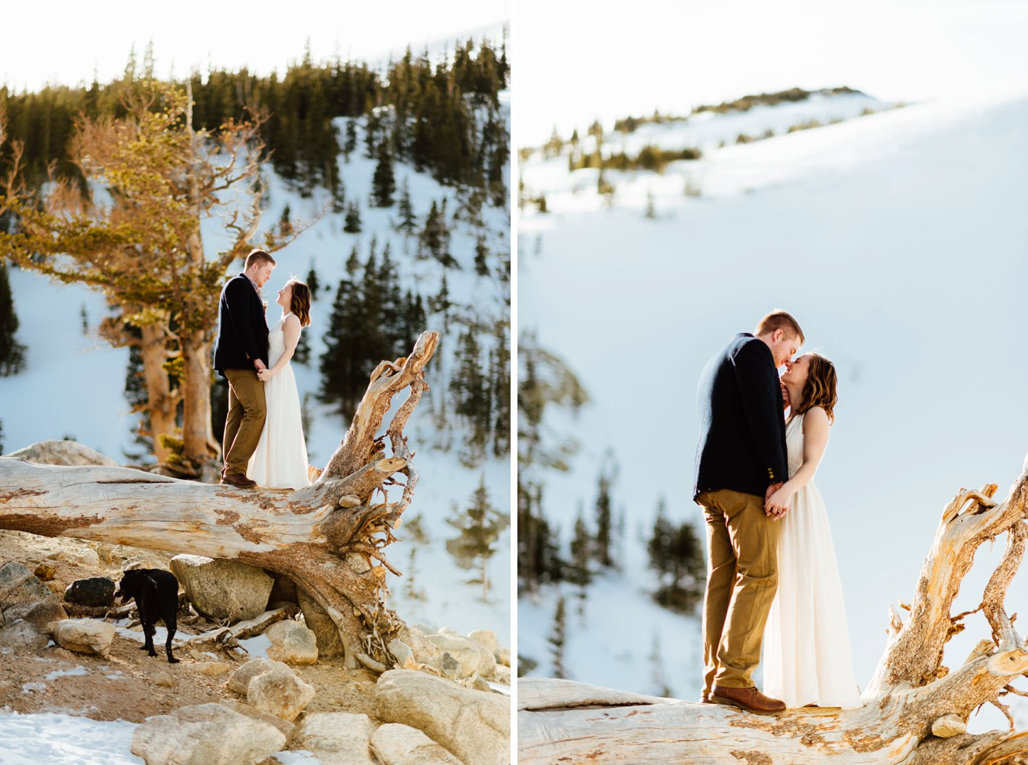 I totally want to bring my dog along on my hiking, mountain elopement! I love how the photographer captured such intimate, romantic moments between Kelsie and Tyler!|Mountain wedding photos by intimate elopement photographer, Maddie Mae.