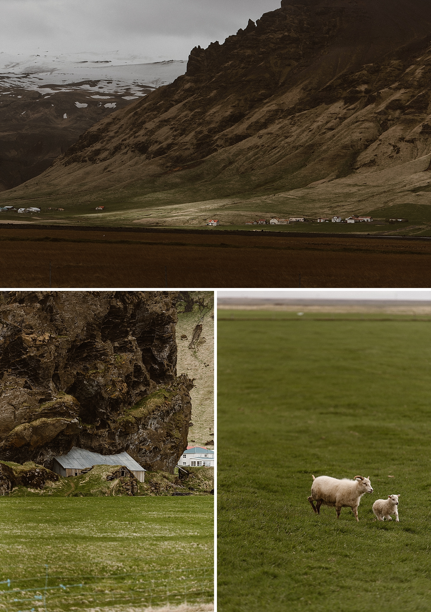 The Icelandic landscape seems to change constantly. From fields of green that are homes to fuzzy farm animals to sweeping mountains and deep blue seas. Iceland is an incredible backdrop for an adventurous intimate elopement!